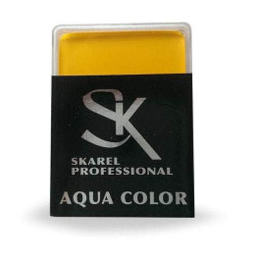 aquacolor profesional